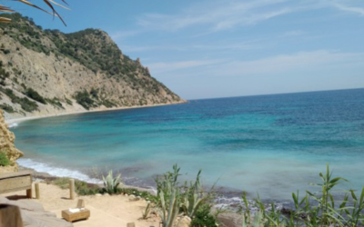 Voyage en Espagne : destination Ibiza